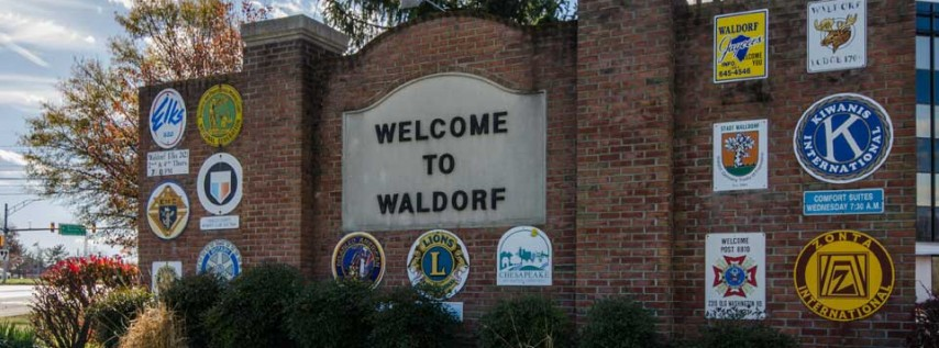 Waldorf cover image