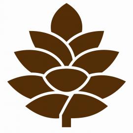 Pinehurst profile image