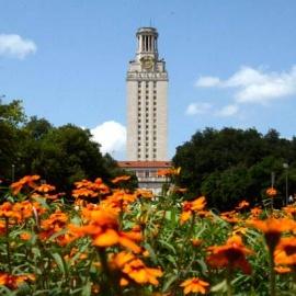 University of Texas profile image