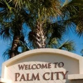 Palm City profile image
