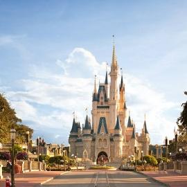 Disney World profile image