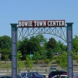 Bowie profile image