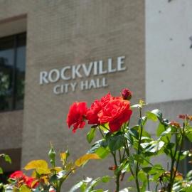 Rockville profile image