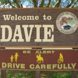 Davie profile image