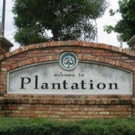 Plantation profile image
