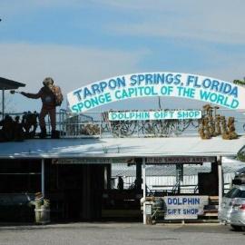 Tarpon Springs profile image