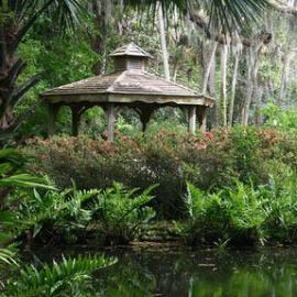 Palm Coast profile image