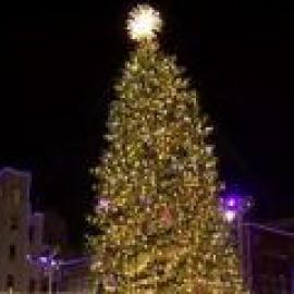 Fort Worth Sundance Square Tree Lighting119
