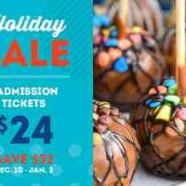 Youth Fair Holiday sale: 4 admissions for $2448