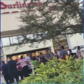 Fire alarm causes panic among shoppers at Sawgrass Mills mall88