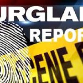Apopka Burglary Report30
