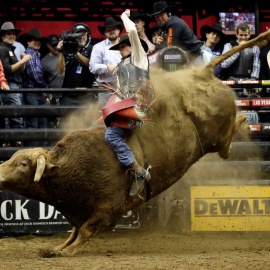 Mason Lowe, professional bull rider, dies after suffering injuries at National Western Stock Show event247