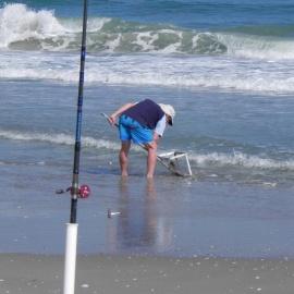 Fishing report: Pompano run requires beach visit74