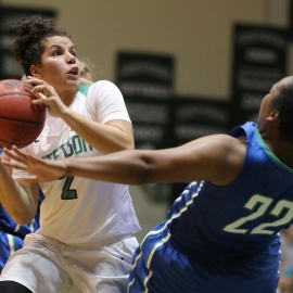 Stetson to face USF in WNIT opener 79