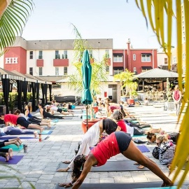 Flow your own way: Poolside yoga at the Hollander Hotel in St. Pete218
