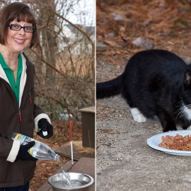LI co-op wants woman and the cats she cares for to scram45