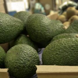 California grower recalls avocados over possible listeria78