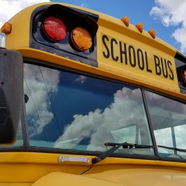 School bus driver crashes and dies after suffering medical episode45