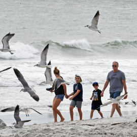 Winds shift, as Brevard beachgoers return following red tide fish kill73
