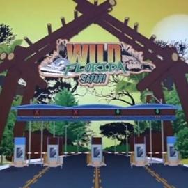 Wild Florida announces multi-million expansion, including a drive-thru safari park and alligator retirement home5