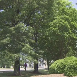 Portsmouth council approves bonuses for city employees57